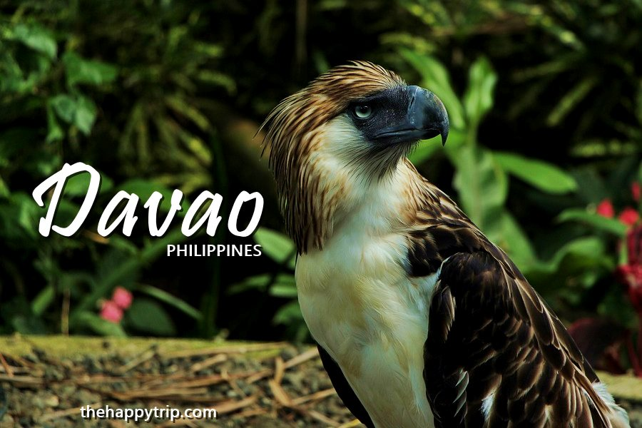 Davao Tourist Spots  + Travel Guide + Hotels