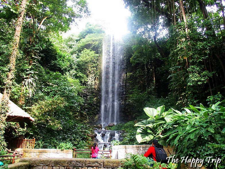 2018 JURONG BIRD PARK TRAVEL GUIDE   ATTRACTIONS, ITINERARY, BUDGET