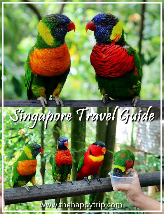 SINGAPORE TOURIST SPOTS + TRAVEL GUIDE