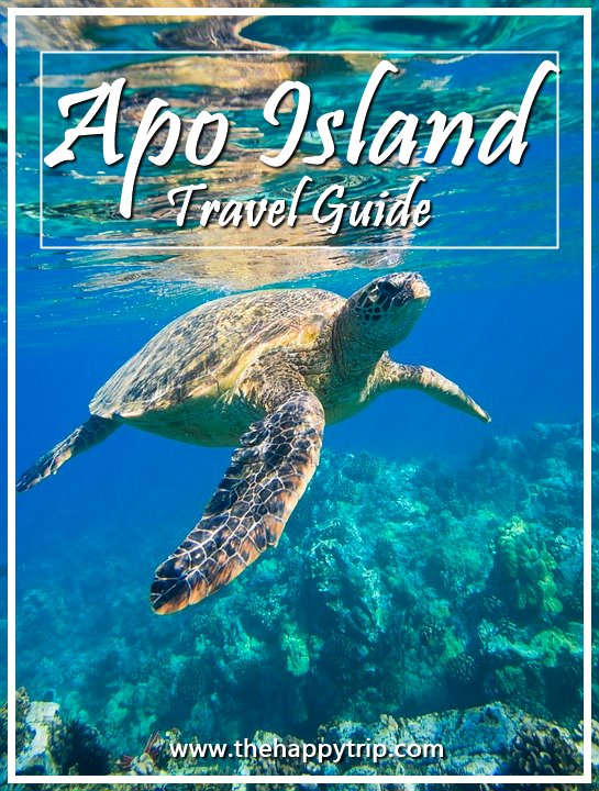 APO ISLAND, DUMAGUETE TRAVEL GUIDE | ITINERARY, BUDGET, LIST OF RESORTS