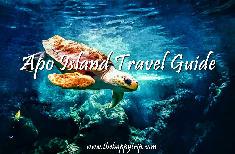 2019 APO ISLAND, DUMAGUETE TRAVEL GUIDE | ITINERARY, BUDGET, LIST OF RESOR