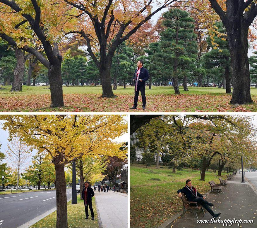 JOJO VITO, TRAVEL BLOGGER IN JAPAN