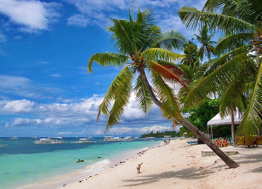 PANGLAO ISLAND, TRAVEL GUIDE