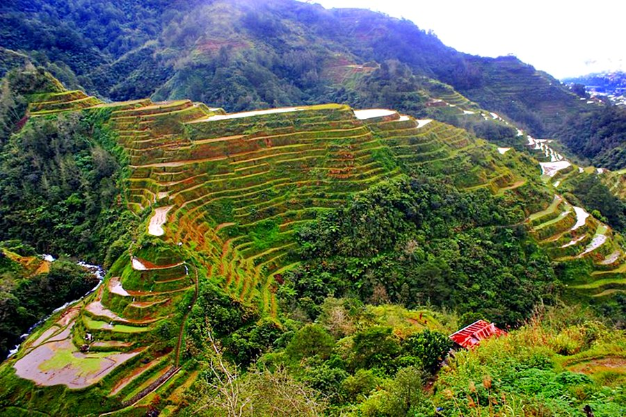 BANAUE,IFUGAO TRAVEL GUIDE