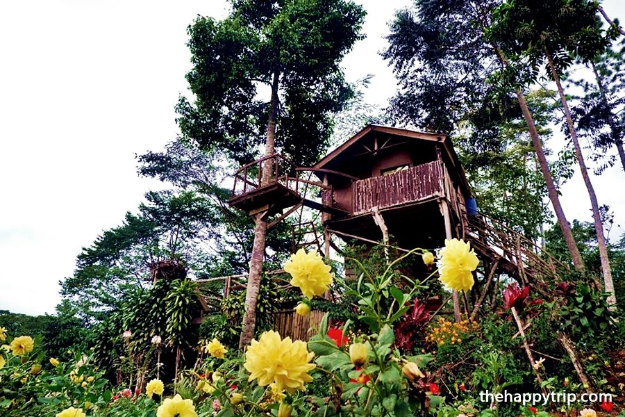 HOBBIT HOUSE BUKIDNON TRAVEL GUIDE
