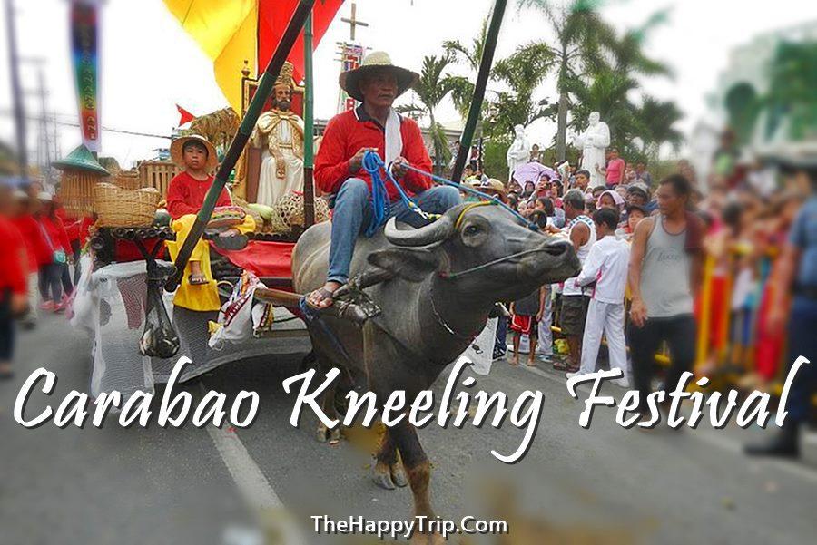 PULILAN KNEELING CARABAO FESTIVAL SCHEDULE OF ACTIVITIES