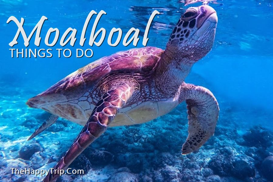 WHAT TO DO IN MOALBOAL CEBU [Philippines ] | Tourist Spots